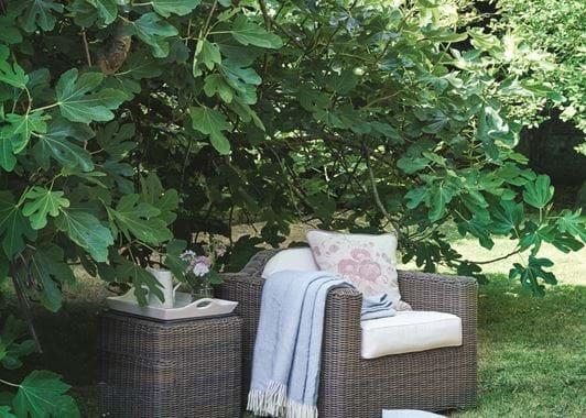 Tresco Armchair and Coleton Side Table_Secret Garden