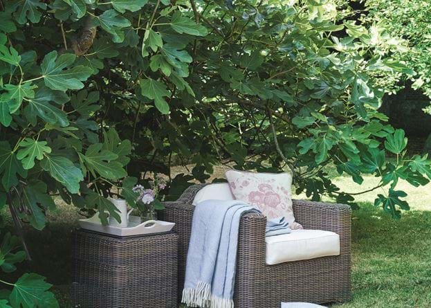 Tresco Armchair and Coleton Side Table_Secret Garden