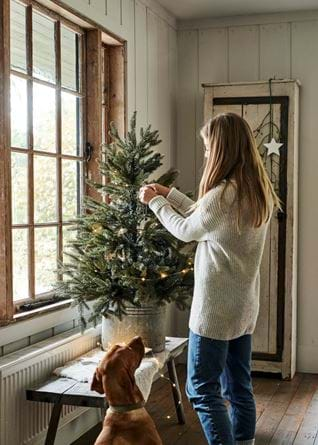 Tree dressing with model & dog