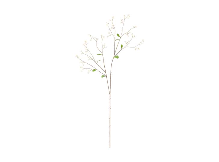Gypsophila Twig_White_Front