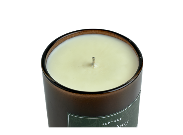 Winterberry Candle, Spiced Orange and Red Berry D