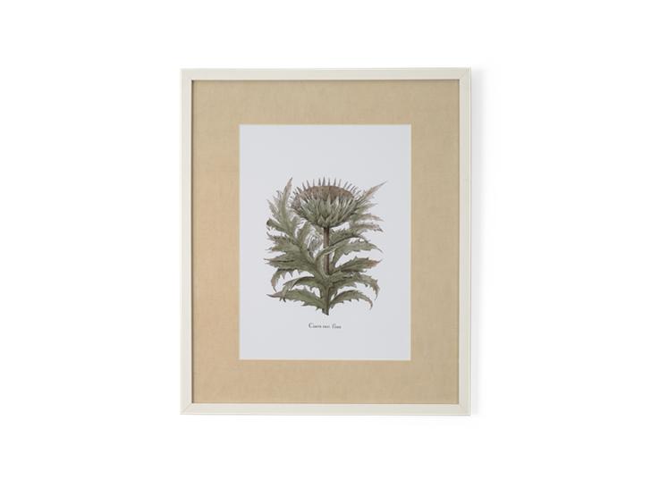 Clipsham Botanical Art - 6 - front