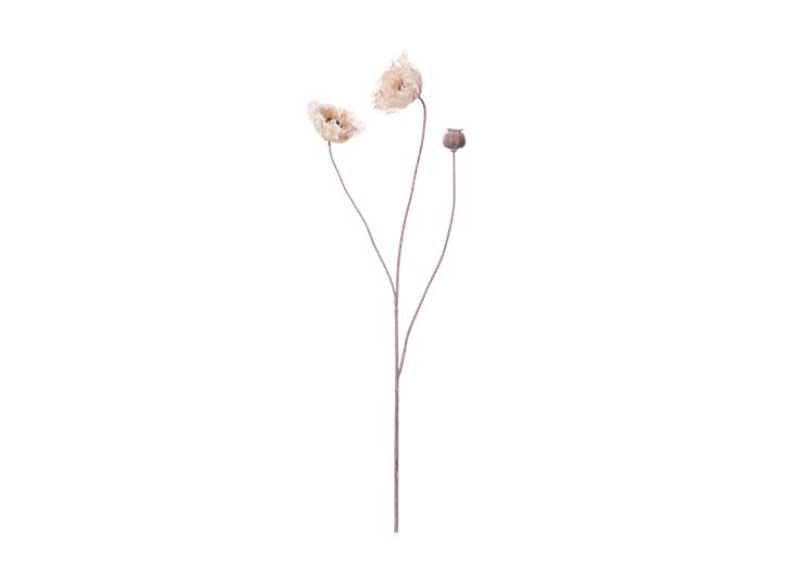 Poppy Stem_Dusky Pink_Front
