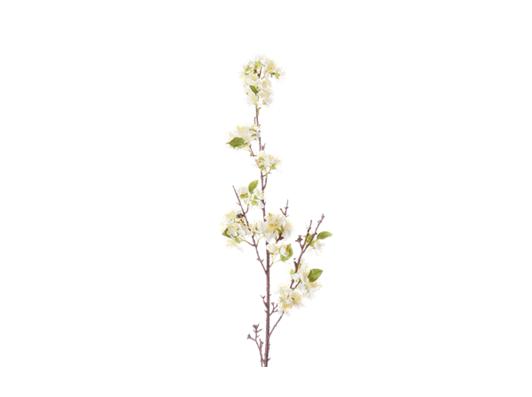 Apple Blossom_White_Square