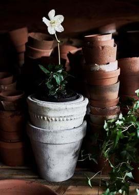 Pile of Pots