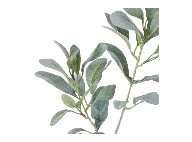 Sage Leaf Spray Green_Detail