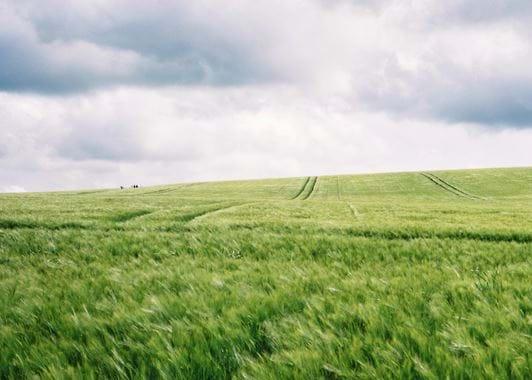 Avebury landscape, Unsplash