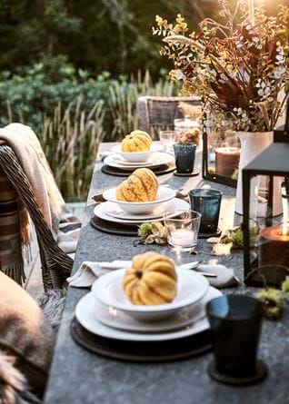 Bonfire Night Garden Place Setting