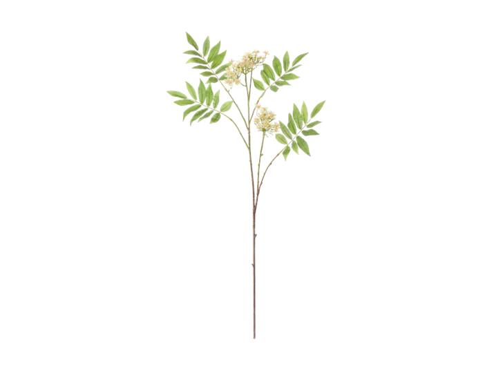 Rowan Blossom Stem_White_Front