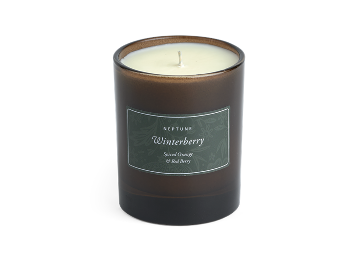 Winterberry Candle, Spiced Orange and Red Berry