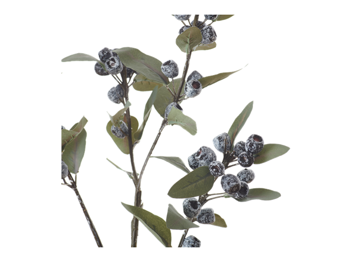 Eucalyptus Berry Spray_Damson_Detail