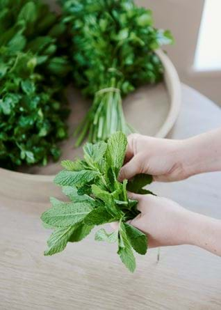 Provenist herb selection 1