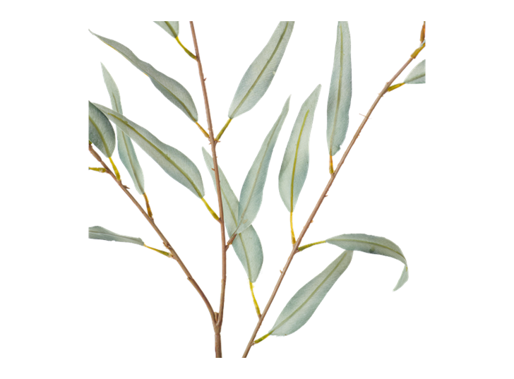Olive Branch_Green_Detail