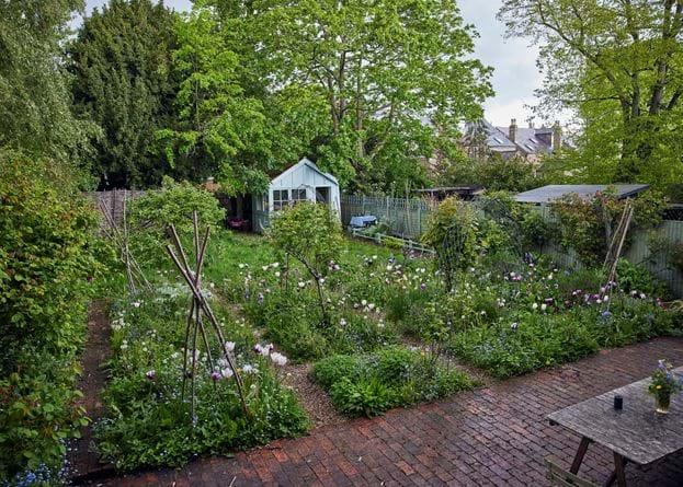 Jane Cumberbatch garden - 21/05/2021 21