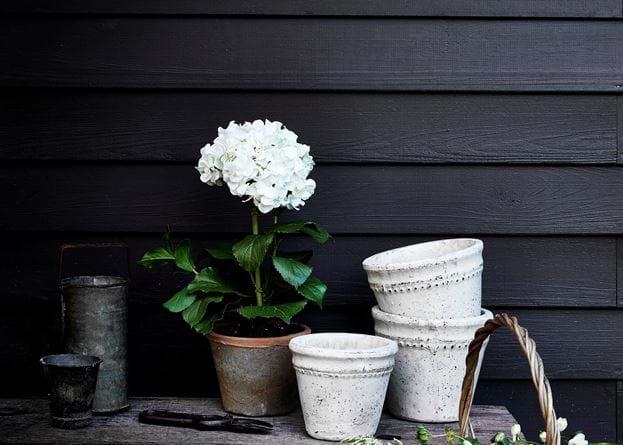 Pile of Basil Pots & Hydrangea Pot