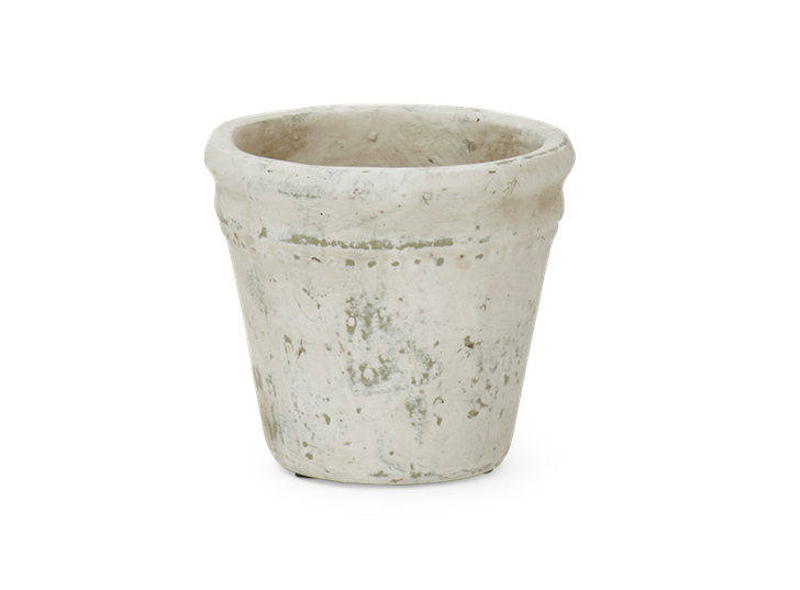 Basil Pot Small
