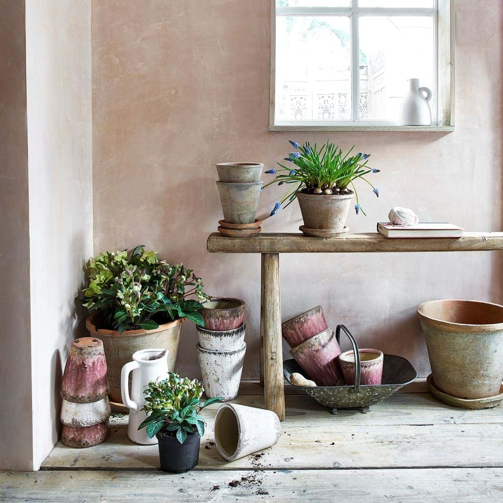 Potting Shed Pot Planting Collection