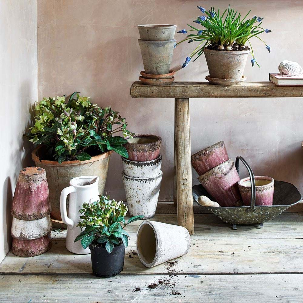 Potting Shed Neptune Pots Collection
