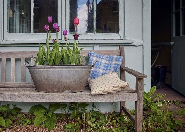 Jane Cumberbatch garden - 21/05/2021 07