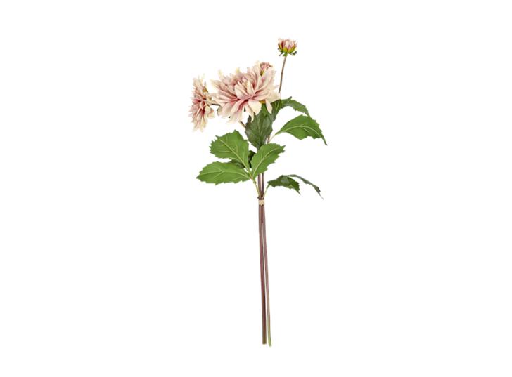 Dahlia bundle soft pink_front