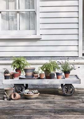 Pots on wheels outside