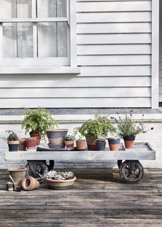 Pots on wheels outside