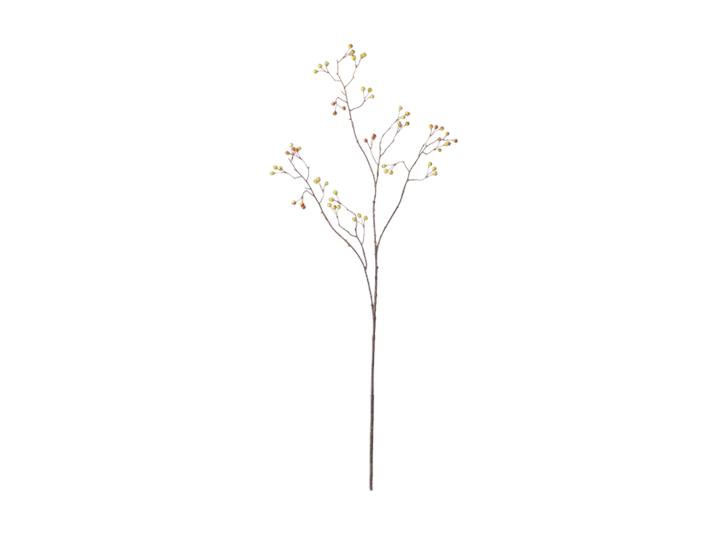 Snowberry Twig_Russet_Front