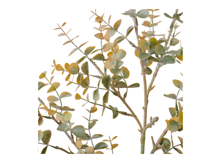 Eucalyptus Mini Spray_Russet_Detail