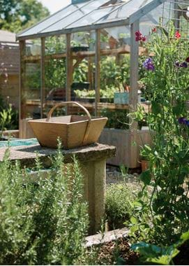 Kirsty's Vegetable Garden-7