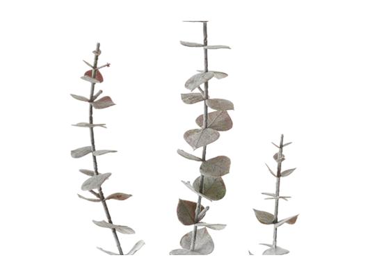 Eucalyptus Greenspray Brown_Detail