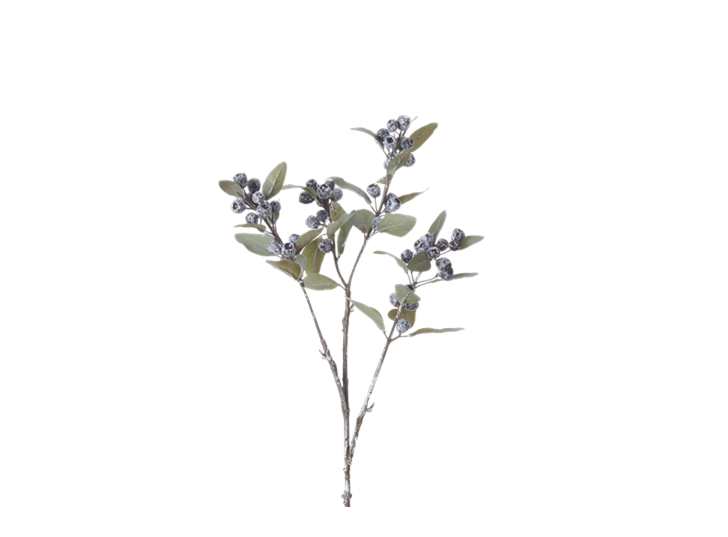 Eucalyptus Berry Spray_Damson_Square