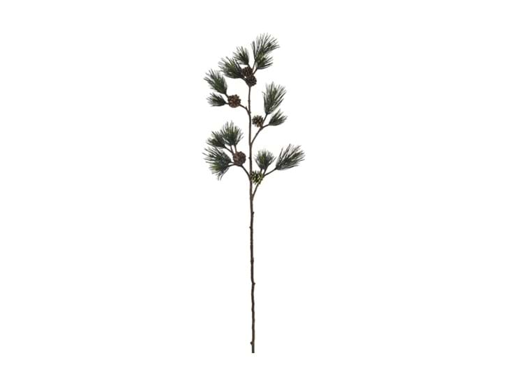 Stems_Giant Pine Spray_Green