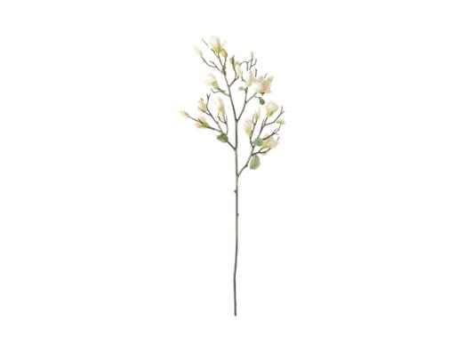 Magnolia Spray_Green_Front