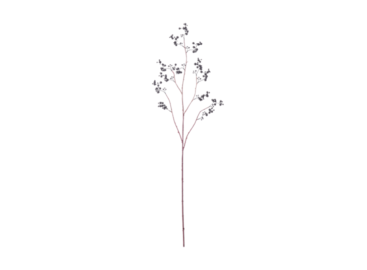 Berry Twig_Damson_Front