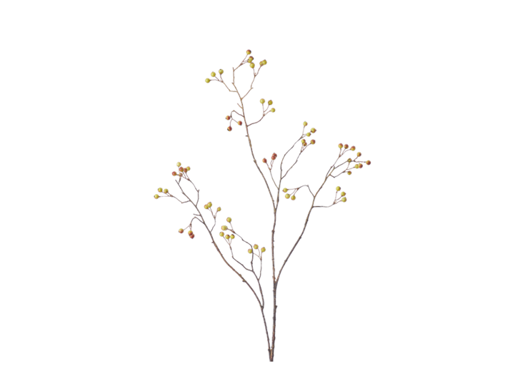 Snowberry Twig_Russet_Square