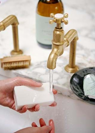 English fig hand soap