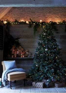 C_S_tree_&_lights_web_041