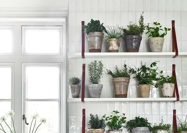 Tiled Potted Herb Wall
