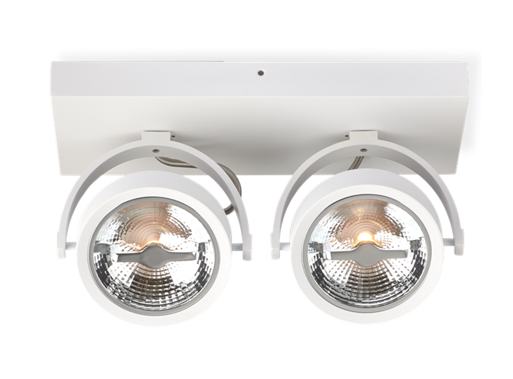 AR111 Surface Mounted Fixture Double White 1