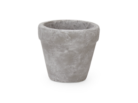 Tarragon Small Pot Pale Cement