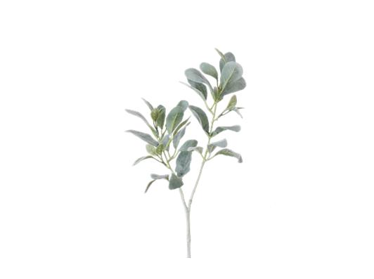 Sage Leaf Spray Green_Square