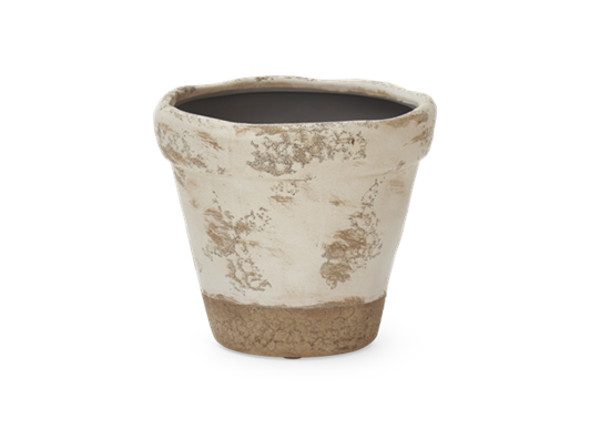 Thyme Pot Large Stone Front