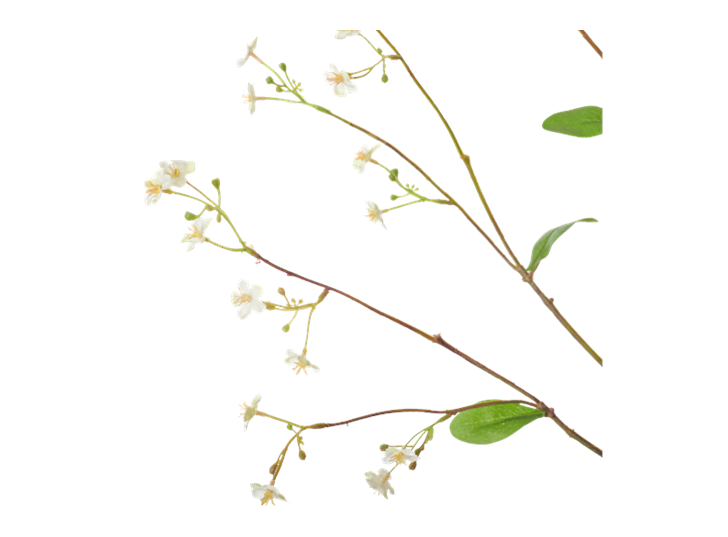 Gypsophila Twig_White_Detail