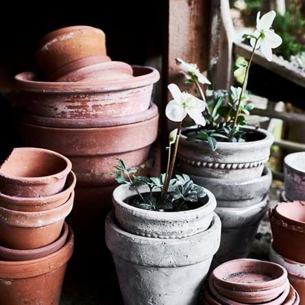 POTTING_SHED_016