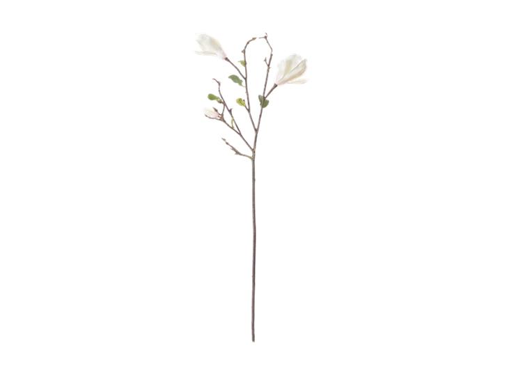 Magnolia Branch_White_Front