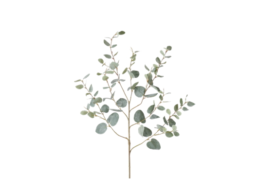 Eucalyptus Greenspray Green_Square