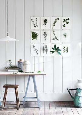 Botanical installation
