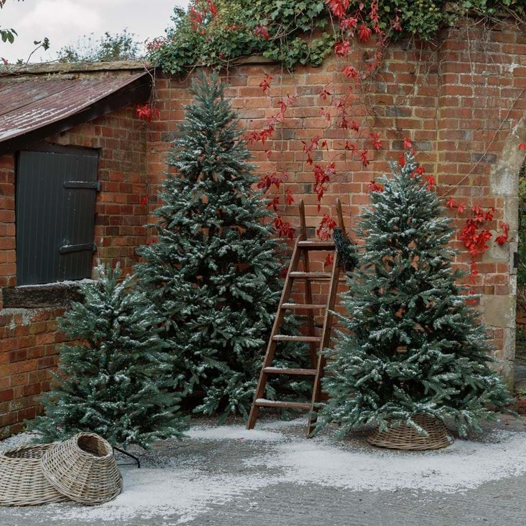 Albert Tree Collection_4,6,8ft
