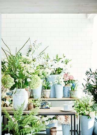 Spring Flower Shop Front